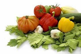 תזונה אישית לקשישים העוברים תהליך שיקומי